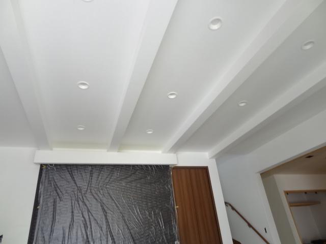 天井:土佐和紙